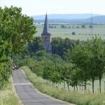 Gruppenlogo von Kirchheim