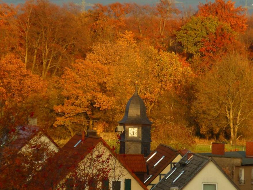 Bergern im Herbstsonnenschein